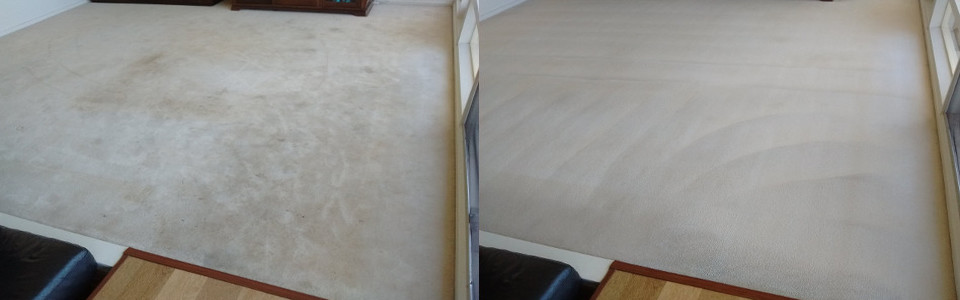 Amazing Carpet Cleaning Results!
